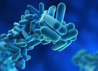 What does a partnership between ASHRAE and CIBSE mean for Legionella bacteria risk management?